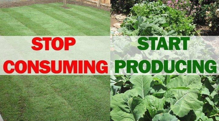 consuming-producing